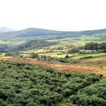 View over Fleet Valley